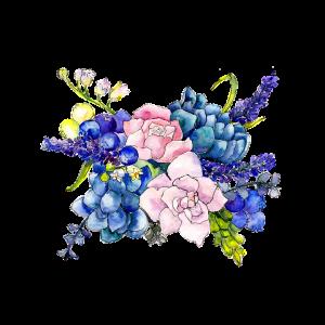 Cvetličarna Omers - flowers-4026935_960_720