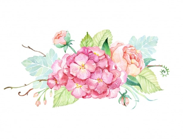 Cvetličarna Omers - flowers-roses-watercolor-painting