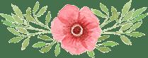 Cvetličarna Omers - h1-img-3