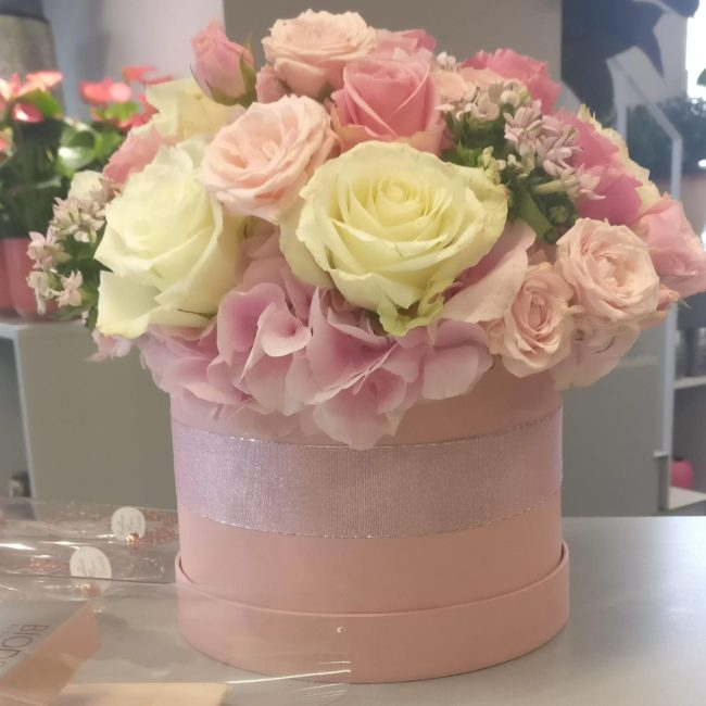 Cvetličarna Omers - BOX SARA