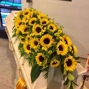 Cvetličarna Omers - sončnice