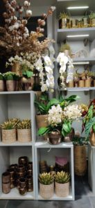 Cvetličarna Omers - cvetlice