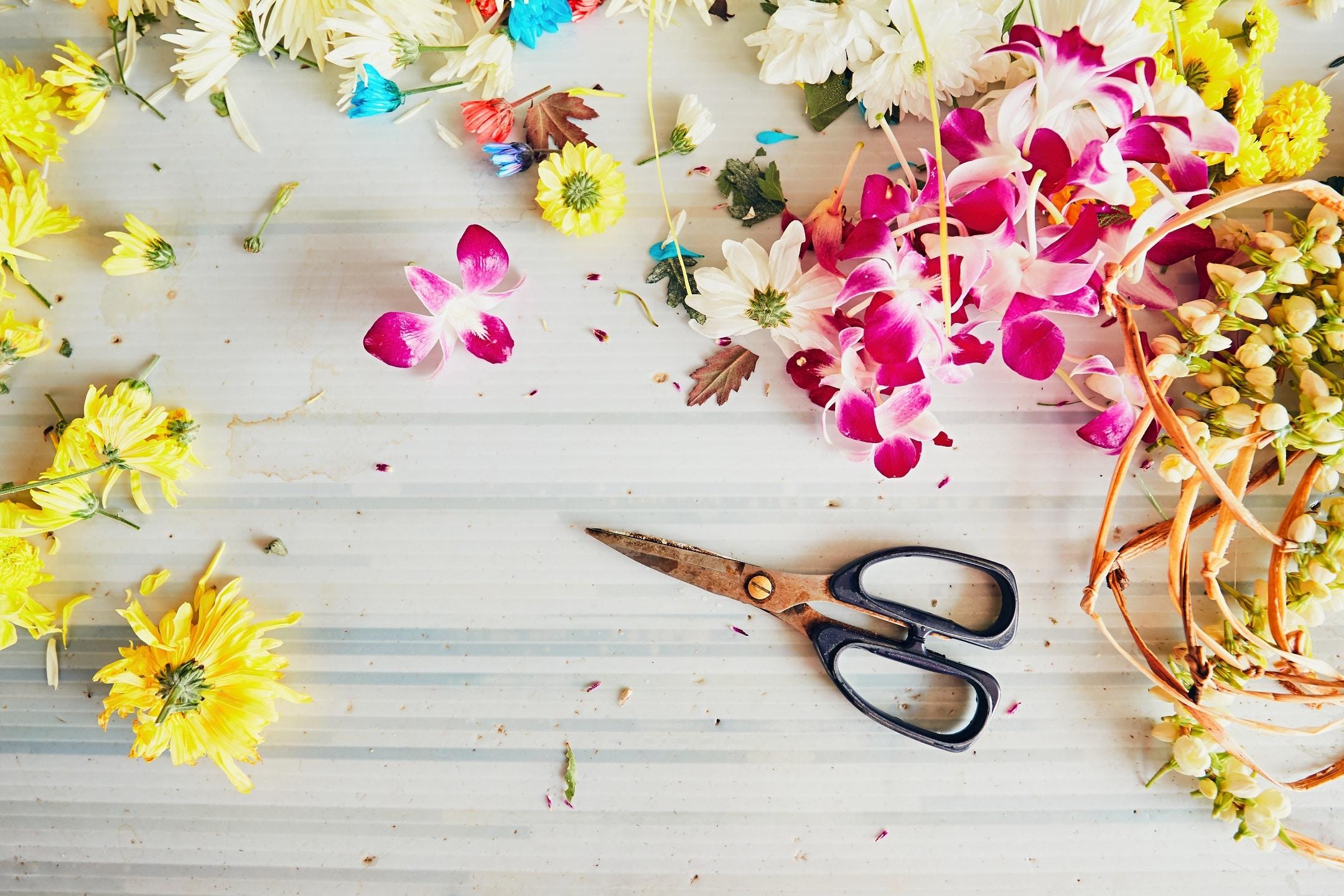 Cvetličarna Omers - Scissors in flower shop