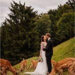 Cvetličarna Omers - jelenov greben15