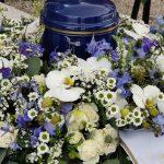 Cvetličarna Omers - ostrožnik